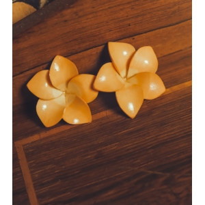 Vintage celluloid oorclips
